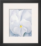 White Pansy, c.1927 Posters by Georgia O'Keeffe