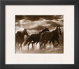 Running Horses and Sunbeams Prints by Monte Nagler
