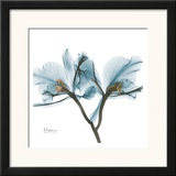 Orchids in Blue Poster by Albert Koetsier