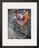 Basket of Flowers II Art by Assaf Frank
