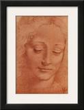 Testa di Giovinetta Print by  Leonardo da Vinci