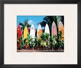 Old Surfboards Never Die, Hawaii Framed Giclee Print by Bernard Fickert