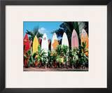 Old Surfboards Never Die, Hawaii Framed Giclee Print by Bernard Fickert