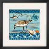 Shorebirds, Sandpiper Posters by Jennifer Brinley