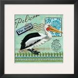 Shorebirds, Pelican Art by Jennifer Brinley