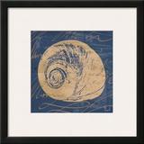 By the Seashore IV Prints by Jason Basil