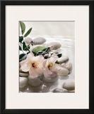 Spring Retreat III Prints by Christine Elizabeth