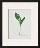 Lily of the Valley Prints by Moritz Michael Daffinger