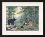 Bears' Campsite Prints by Anita Phillips