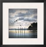 Circling Skies Prints by William Vanscoy