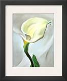 Calla Lily Turned Away, 1923 Poster by Georgia O'Keeffe