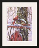 Red Sled with Cardinals Prints by Donna Race
