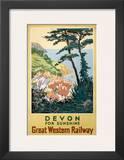 Devon for Sunshine Posters