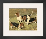 Basset Hounds Posters by Vero Shaw