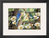 Serenade in Blue Prints by Al Dornish