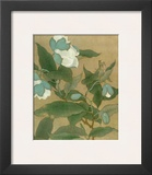 Magnolia and Praying Mantis Print