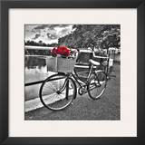 Romantic Roses I Prints by Assaf Frank