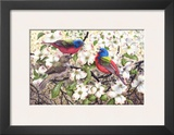 Painted Bunting Posters by Al Dornish