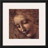 Testa di Faniciulla Detta (detail) Poster by  Leonardo da Vinci