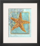Starfish and Coral Prints by Lori Schory