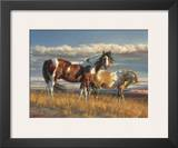 The Painted Desert Prints by Nancy Glazier