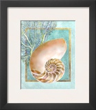 Nautilus Shell and Coral Prints by Lori Schory