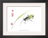 Grasshopper Prints by Nan Rae