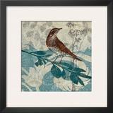 Songbird I Posters by Carol Robinson