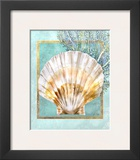 Scallop Shell and Coral Posters by Lori Schory