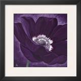 Purple Passion I Prints by Kaye Lake