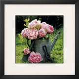 Watering Can And Peonies Posters by James Guilliam