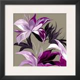 Lily XXIII Prints by Sally Scaffardi