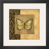Butterfly Square Posters by Susan Winget