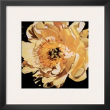 Yellow Peony Poster by Jennifer Harmes
