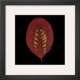 Smokebush Leaf on Black Art by June Hunter