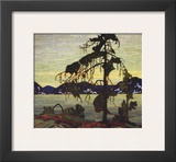 Jack Pine Prints by Tom Thomson