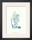 Shades of Aqua I Posters