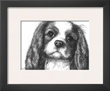 Louie the Cavalier King Charles Art by Beth Thomas
