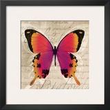 Butterflies III Prints by Tandi Venter