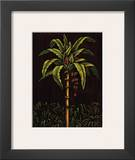 Tropical Paradise II Prints by Samuel Blanco