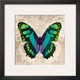 Butterflies II Posters by Tandi Venter