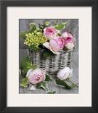 Roses Prints by Catherine Beyler