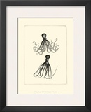 Sepia Octopus Framed Art Print
