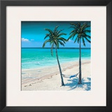 Palm Island I Prints by Paul Geatches
