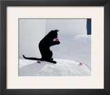 Cat and Flower Prints by  Hubert & Klein