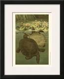 Pond Turtles Poster by Louis Prang