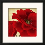 Red Peony I Art by Linda Wood