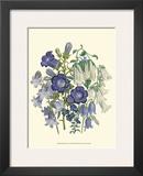 Loudon Florals I Print by Jane W. Loudon