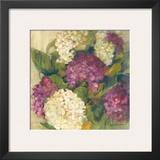 Hydrangea Delight I Prints by Carol Rowan