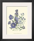 Loudon Florals II Prints by Jane W. Loudon